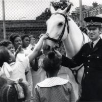 LB Islington, a police horse visits Drayton Park school to demonstrate road safety, 1974